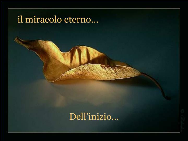 il miracolo eterno…