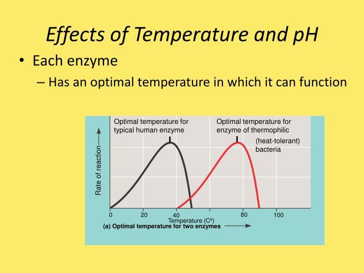 Optimal temperature for