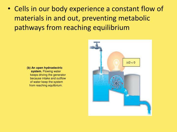 (b) An open hydroelectric