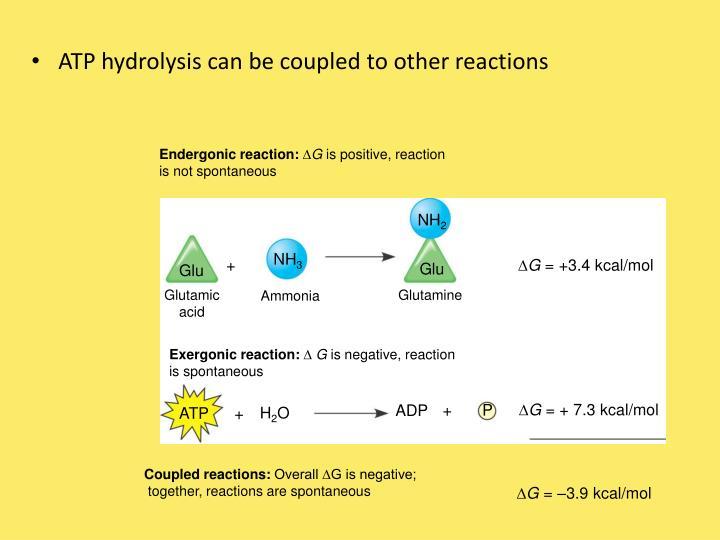 Endergonic reaction: