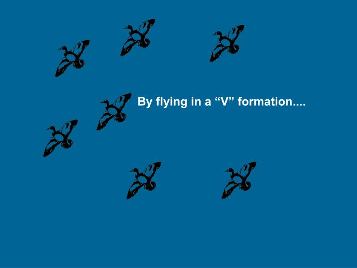 "By flying in a ""V"" formation...."