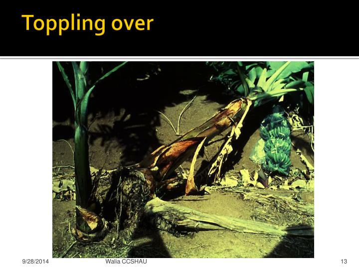 Toppling over