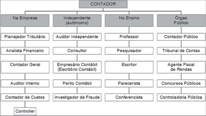 Prof Ricardo luiz