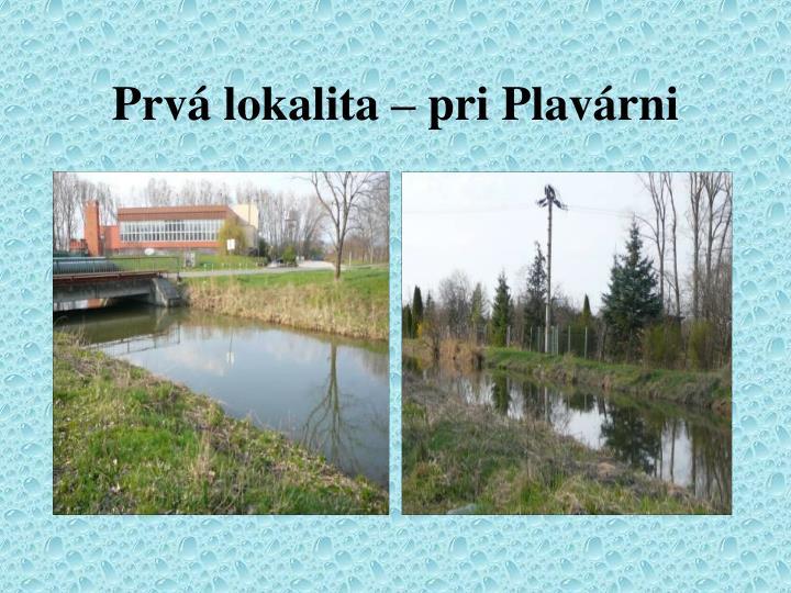 Prvá lokalita – pri Plavárni