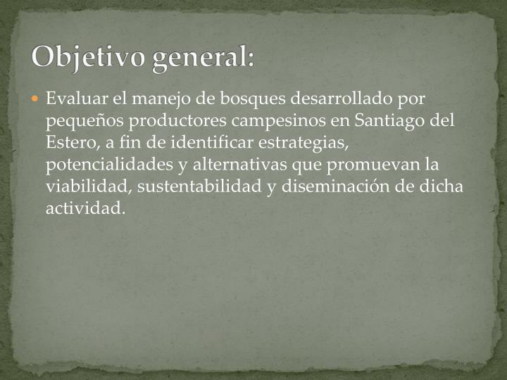 Evaluar el manejo de bosques desarrollado por pequeños productores campesinos en Santiago del Estero, a fin de identificar estrategias, potencialidades y alternativas que promuevan la viabilidad, sustentabilidad y diseminación de dicha actividad.