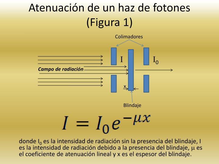 Atenuacin de un haz de fotones (Figura 1)