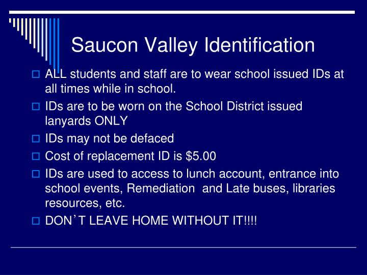 Saucon Valley Identification