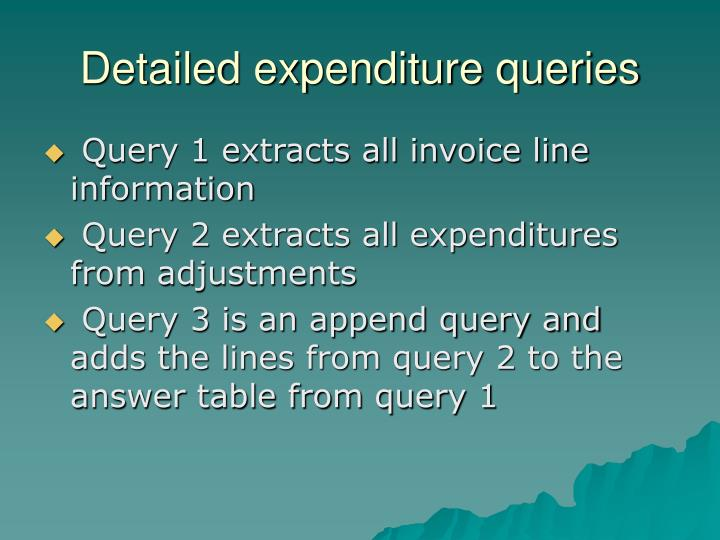 Detailed expenditure queries