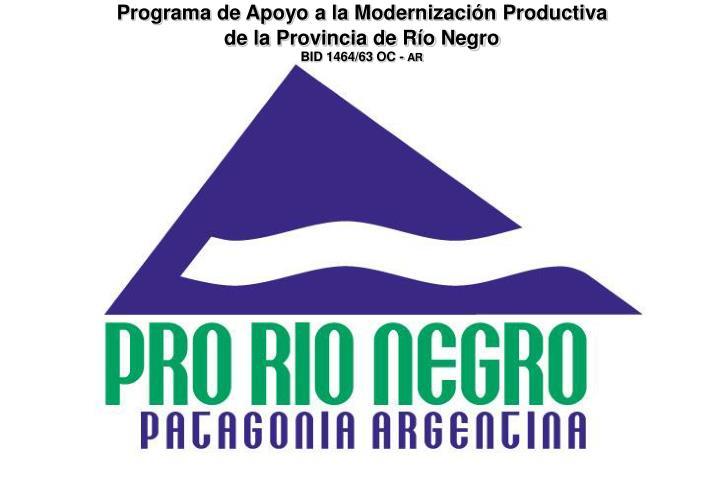Programa de Apoyo a la Modernización Productiva