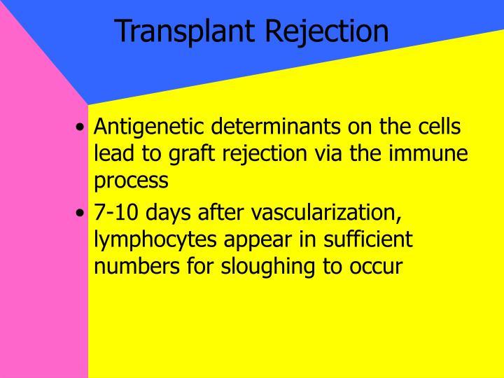 Transplant Rejection