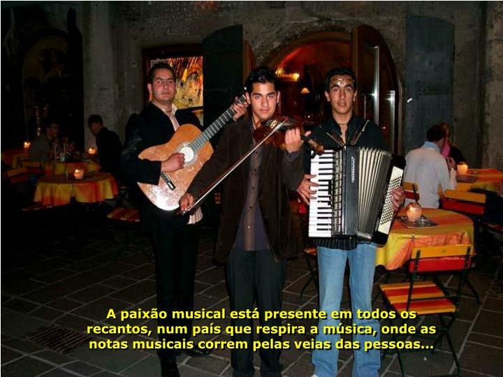 A paixão musical está presente em todos os recantos, num país que respira a música, onde as notas musicais correm pelas veias das pessoas...