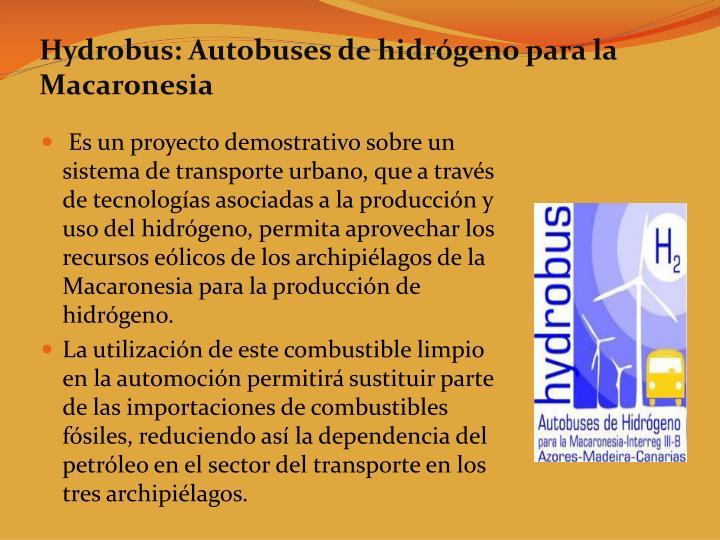 Hydrobus