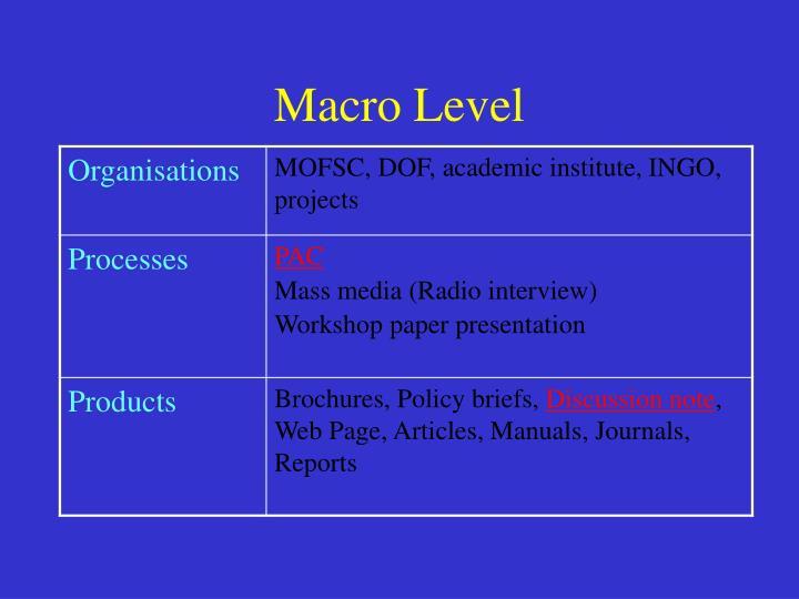 Macro Level