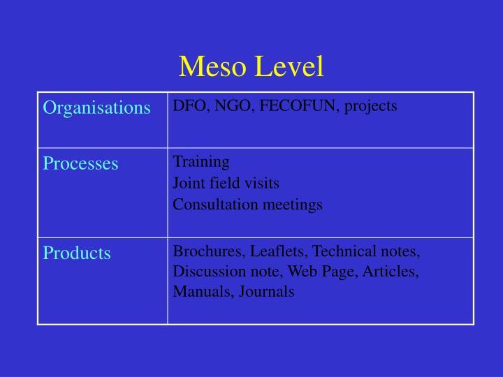 Meso Level