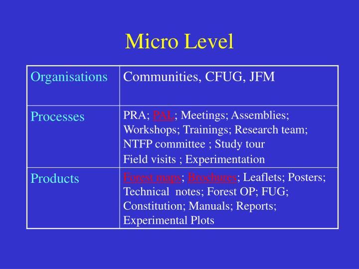 Micro Level