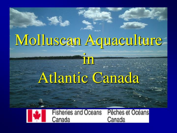 Molluscan aquaculture in atlantic canada