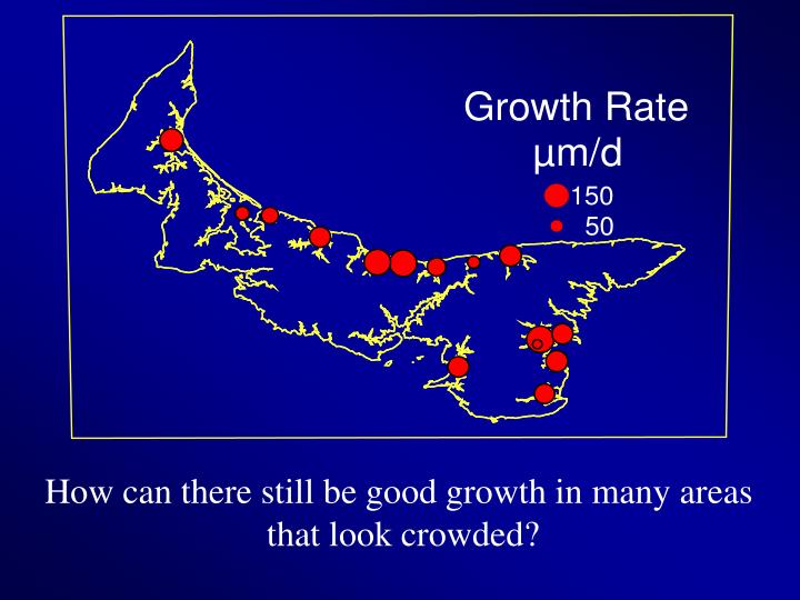 How can there still be good growth in many areas