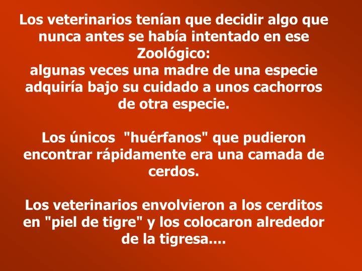 Los veterinarios tenían que decidir algo que nunca antes se había intentado en ese Zoológico: