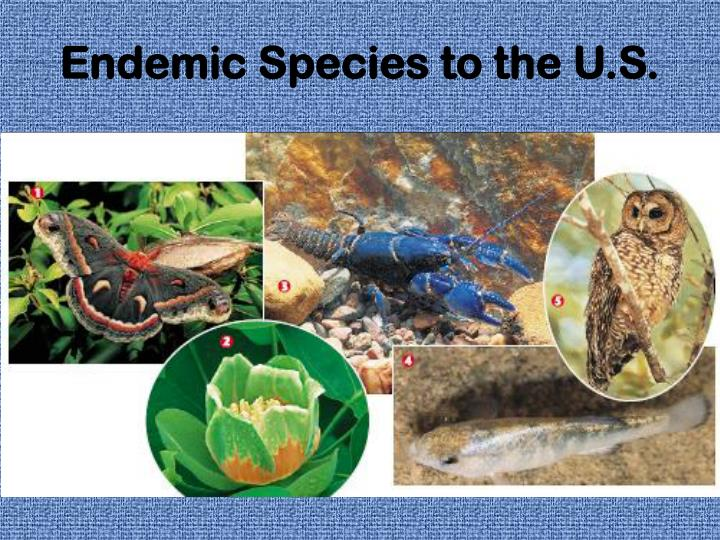 Endemic Species to the U.S.