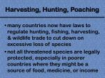 harvesting hunting poaching