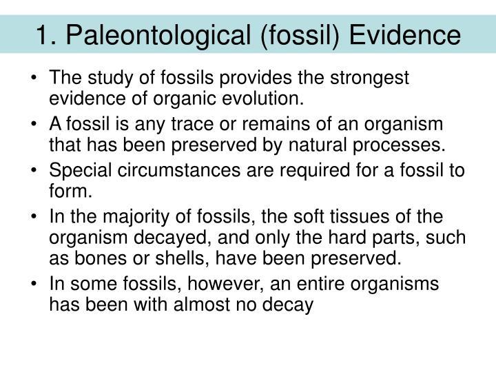 1. Paleontological (fossil) Evidence