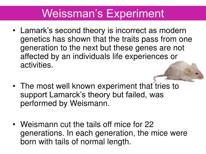 Weissman's Experiment