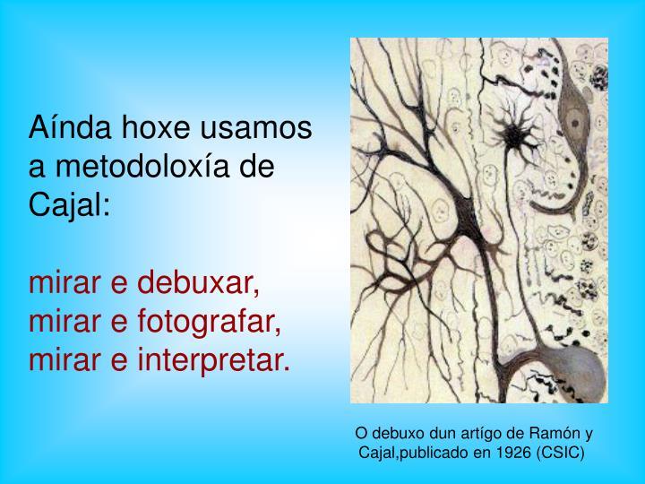 Aínda hoxe usamos a metodoloxía de Cajal: