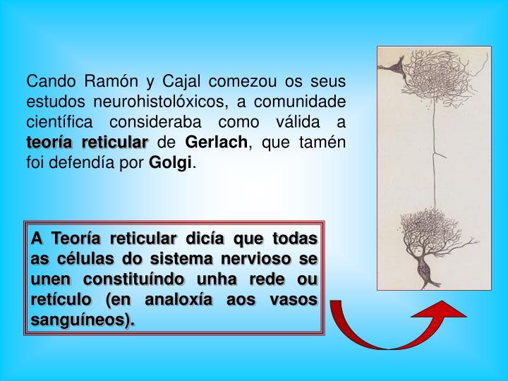 A Teoría reticular dicía que todas as células do sistema nervioso se unen constituíndo unha rede ou retículo (en analoxía aos vasos sanguíneos).