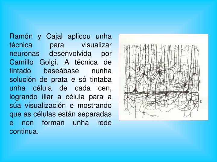 Ramón y Cajal aplicou unha técnica para visualizar neuronas desenvolvida por Camillo Golgi. A técnica de tintado baseábase nunha solución de prata e só tintaba unha célula de cada cen, logrando illar a célula para a súa visualización e mostrando que as células están separadas e non forman unha rede continua.