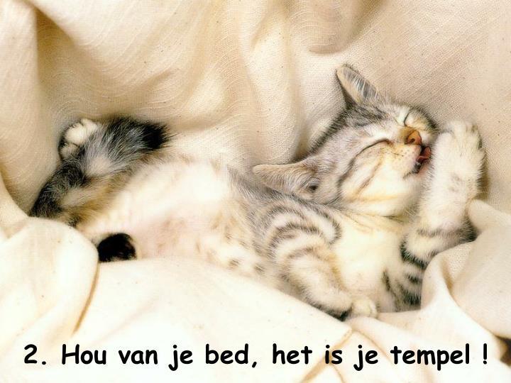 2. Hou van je bed, het is je tempel !