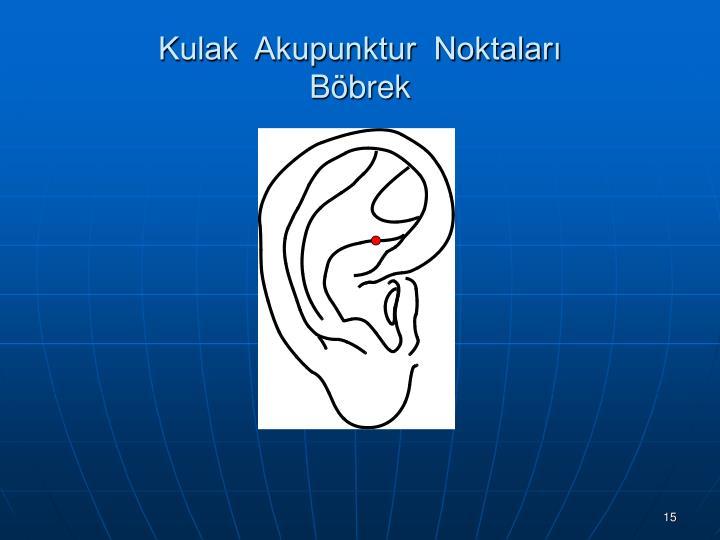 Kulak  Akupunktur  Noktaları