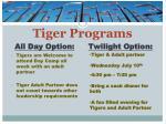 tiger programs