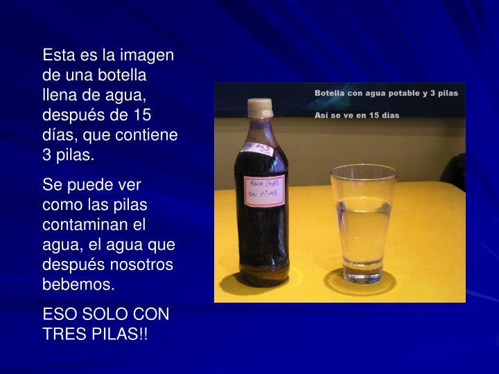 Esta es la imagen de una botella llena de agua, después de 15 días, que contiene 3 pilas.