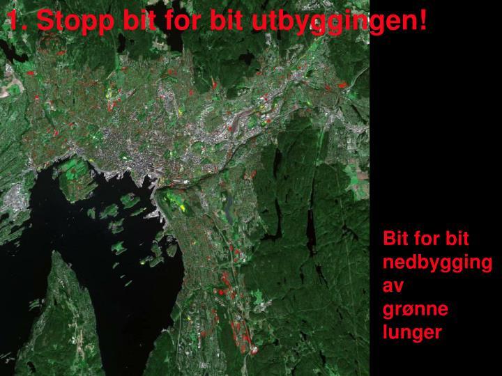 1. Stopp bit for bit utbyggingen!
