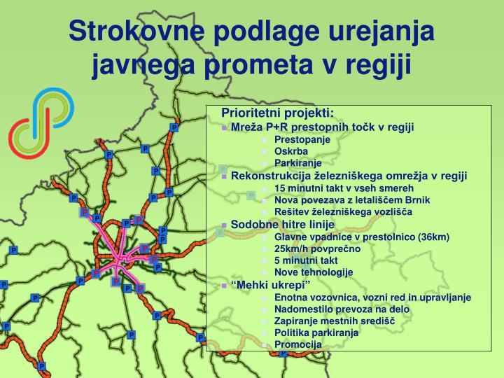 Strokovne podlage urejanja javnega prometa v regiji