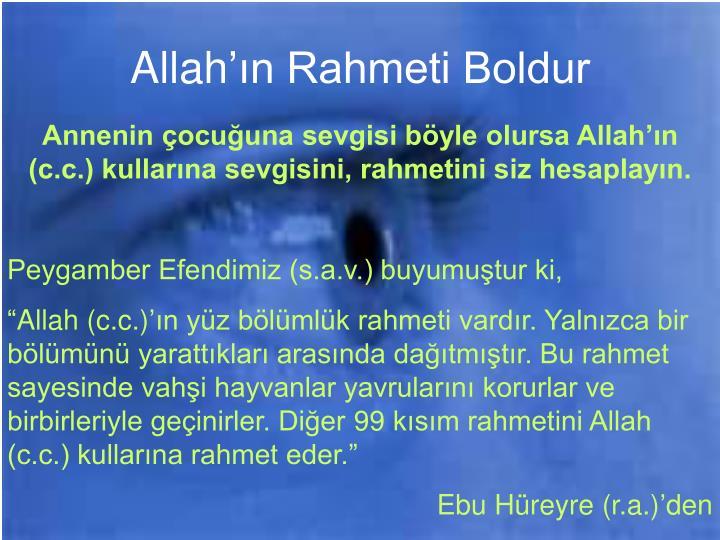 Allahn Rahmeti Boldur