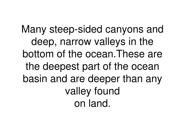 Many steep-sided canyons and deep, narrow valleys in the bottom of the ocean.These are the deepest part of the ocean basin and are deeper than any valley found