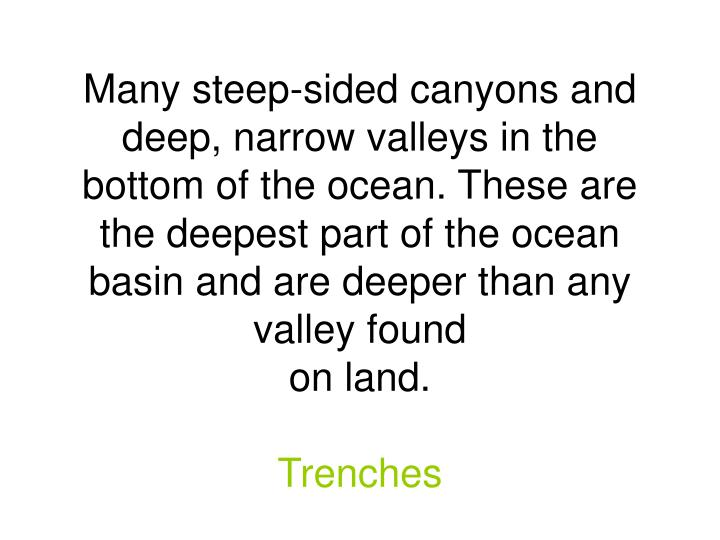Many steep-sided canyons and deep, narrow valleys in the bottom of the ocean. These are the deepest part of the ocean basin and are deeper than any valley found