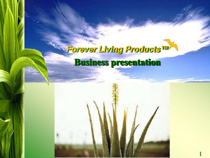 Forever living business presentation leeds
