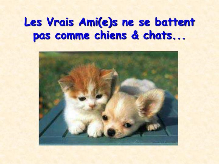 Les Vrais Ami(e)s