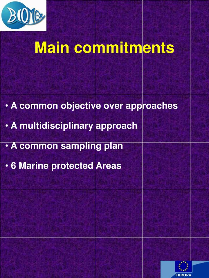 Main commitments