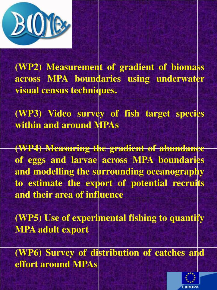 (WP2) Measurement of gradient of biomass across MPA boundaries using underwater visual census techniques.