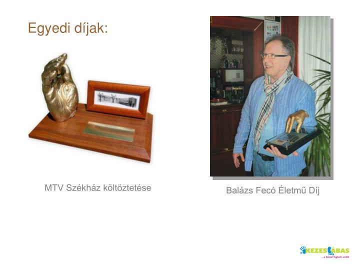 Egyedi díjak: