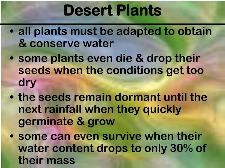 all plants must be adapted to obtain & conserve water