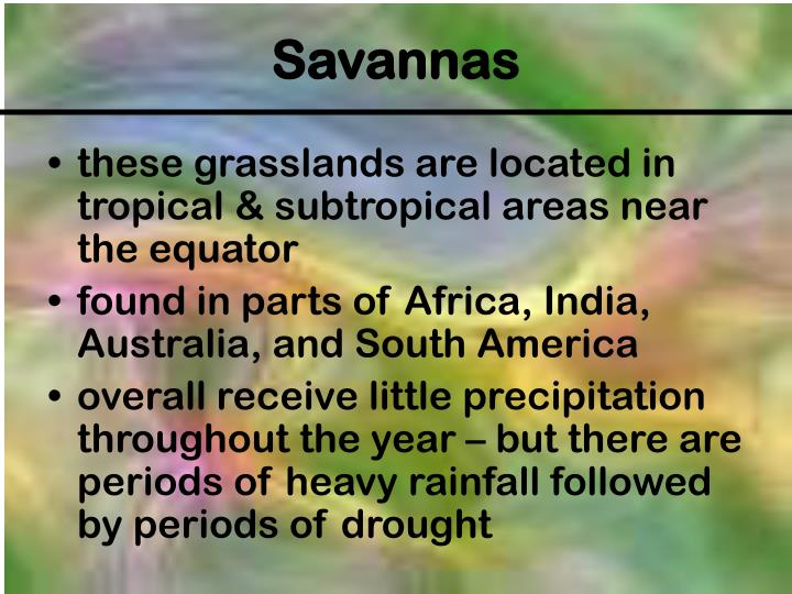 these grasslands are located in tropical & subtropical areas near the equator