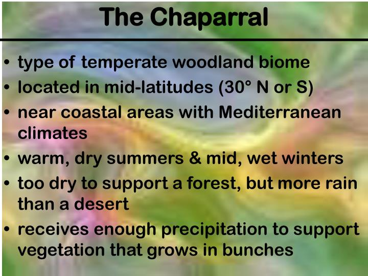 type of temperate woodland biome