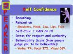 s elf confidence