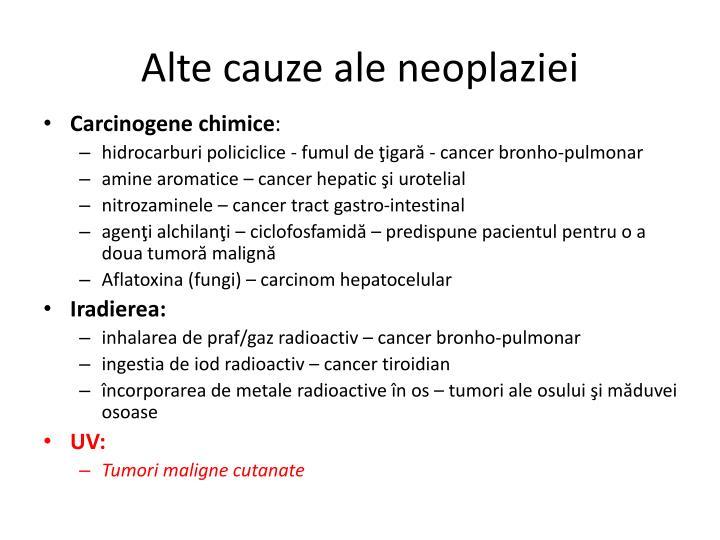 Alte cauze ale neoplaziei