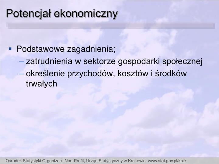Potencjał ekonomiczny