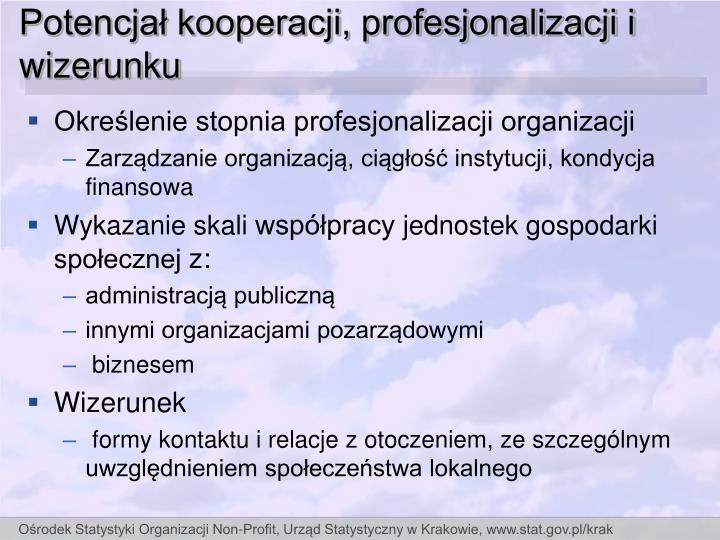 Potencjał kooperacji, profesjonalizacji i wizerunku